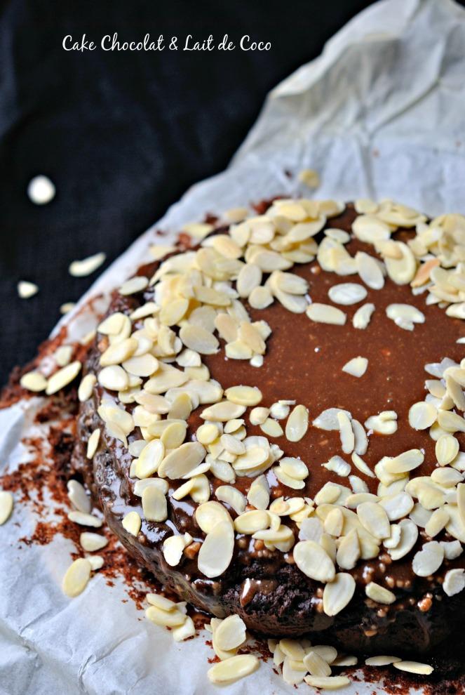 Cake Chocolat & Lait de Coco 1