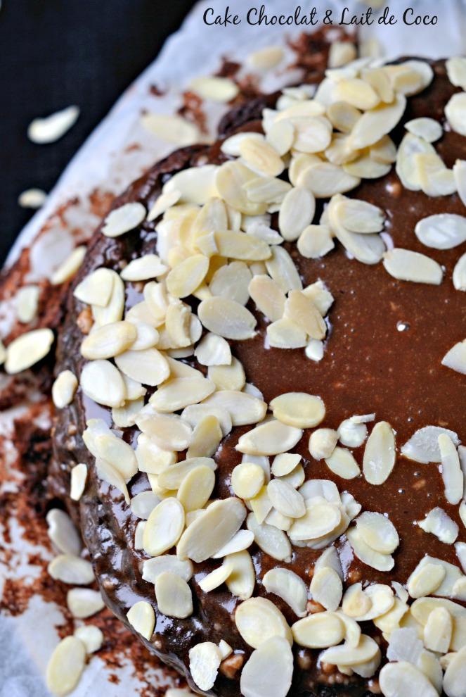 Cake Chocolat & Lait de Coco  2