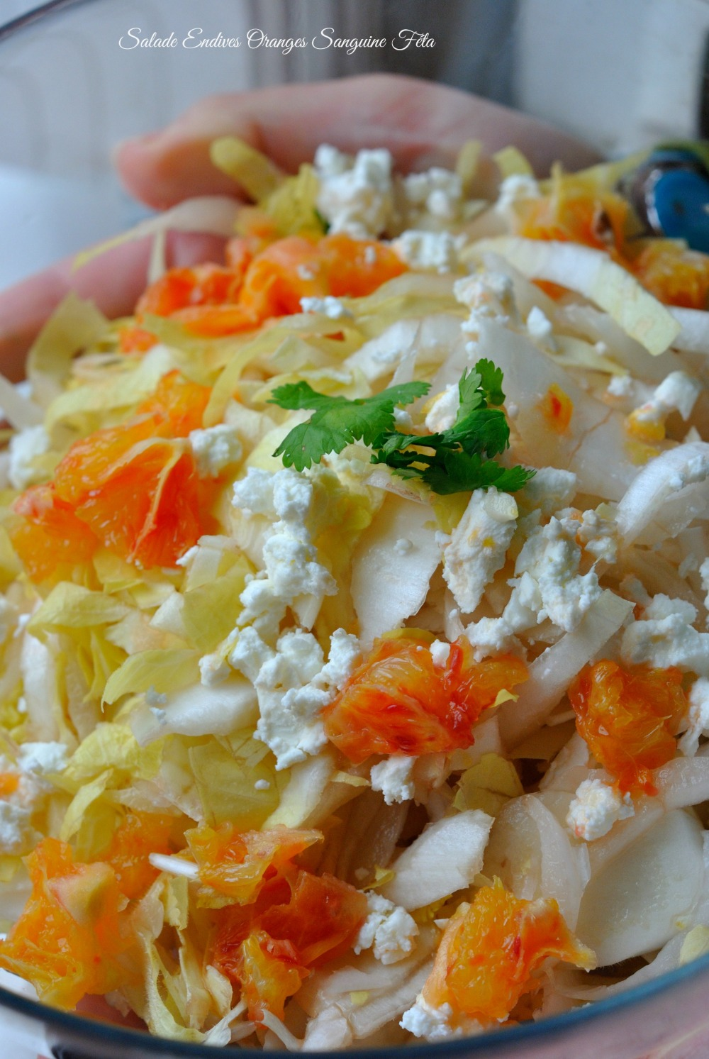 Salade Endives Orange Sanguine Féta 1